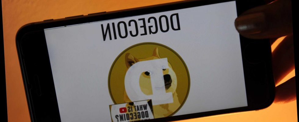 What is Dogecoin and why is the stock price going down ...